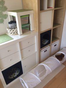 猫用収納棚